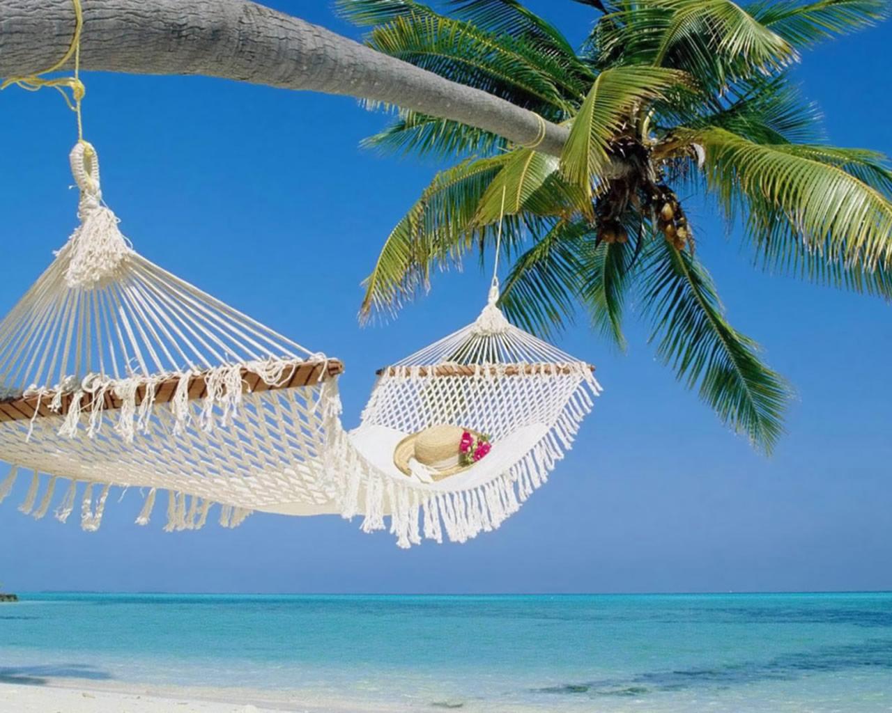 Holiday dreams: A day at the beach