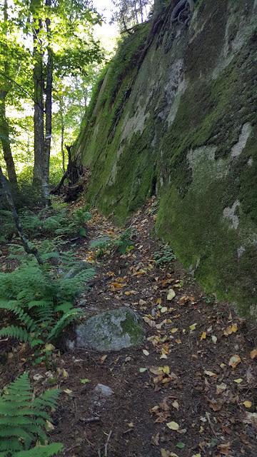 Sentier vers le sommet du mont Gorille