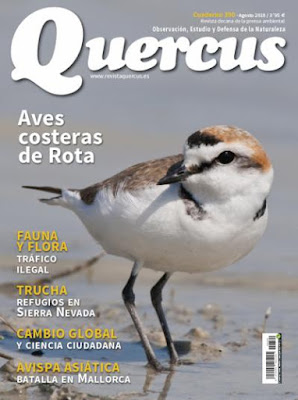 Revista Quercus núm. 390 - Agosto de 2018
