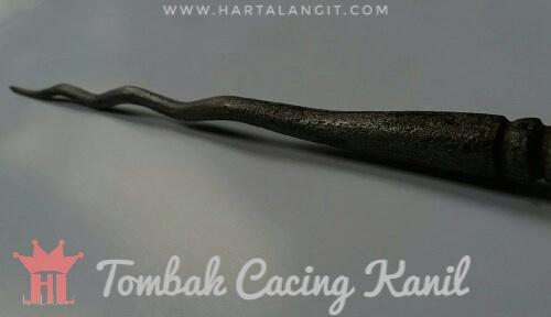 gambar tombak cacing kanil