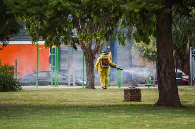 Invasión de mosquitos: Salud Municipal sale a fumigar
