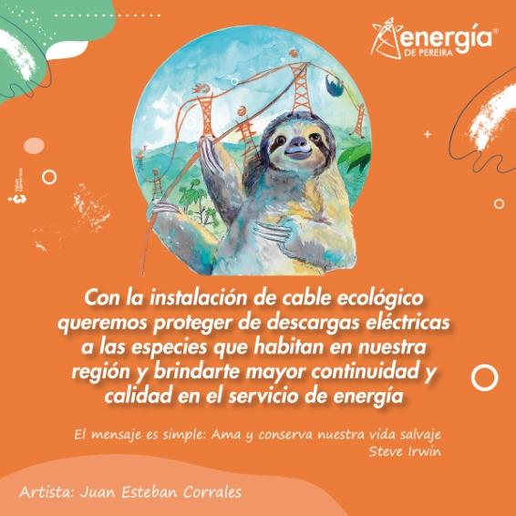Proteger de descargas eléctricas a las especies que habitan en nuestra región