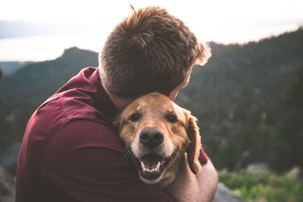 Dogs (And Other Animals) And Mental Health