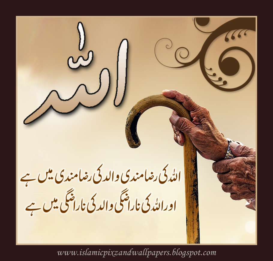 Islamic Pictures and Wallpapers: Aqwal-e-zareen in urdu pictures