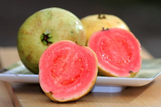 vitamin c buah jambu biji meningkatkan daya imun tubuh