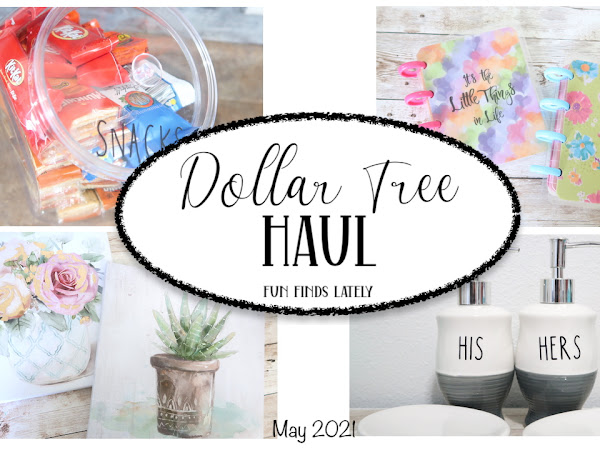 Dollar Tree Haul | Fun Finds lately and a few ideas