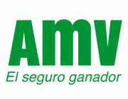 Seguros de moto AMV