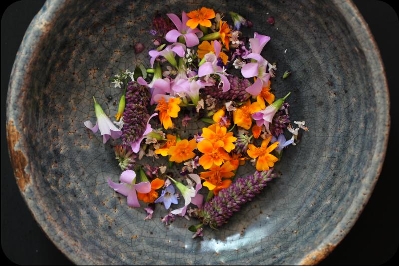 Frisch gepflückte Blüten aus meinem Kräutergarten | Arthurs Tochter Kocht von Astrid Paul