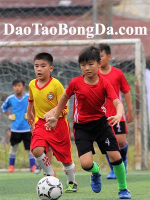 DaoTaoBongDa.com