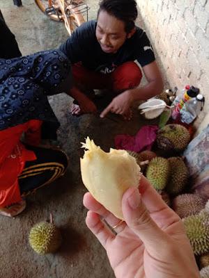 Misi Mencari Durian  durian batu kurau air terjun batu kurau perak tempat menarik di perak  jom melawat perak visit malaysia musim durian batu kurau 2018  harga durian batu kurau 2018  durian perak 2019  musim durian perak 2019  musim durian di perak 2019  musim durian perak 2018  bila musim durian di perak 2019  durian murah di perak 2019 durian kampung raja buah jenis durian kampung  harga durian kampung  pokok durian kampung  jenis durian paling mahal  musim durian di malaysia  durian isi oren  durian d101  durian lipan