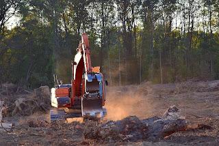 Deforestation, its causes, effects and strategies Ritusacademy RSS Feed ACTRESS RADHIKA APTE PHOTO GALLERY  | 3.BP.BLOGSPOT.COM  #EDUCRATSWEB 2020-05-11 3.bp.blogspot.com https://3.bp.blogspot.com/-Cqs6Xh08s7s/WbFbvgq2ajI/AAAAAAAACHM/kBrmXO7aUBwB3EUZiNjC8O1FnV_tzenkACLcBGAs/s320/radhika%2Bapte16.jpg