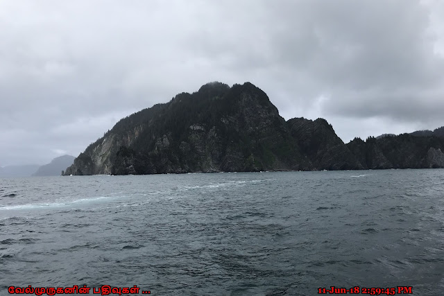 Renard Island Alaska