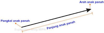 cara menggambarkan vektor