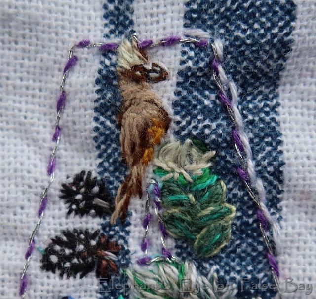 Mousebird detail