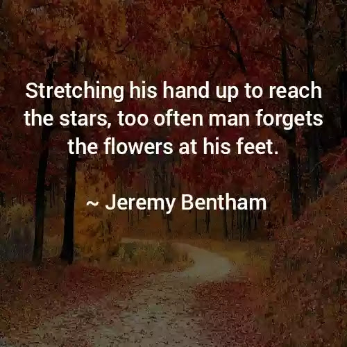 Jeremy Bentham Best Quotes