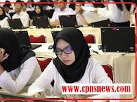Persyaratan CPNS 2019/2020 S1 Juga Cara Pendaftaran Online Lengkap