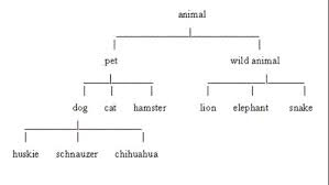 Information transfer note making lets learn english grammar format of tree diagram ccuart Choice Image