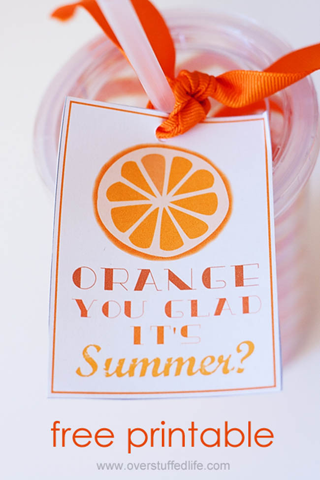 Looking for a cute end of year teacher gift, or just something fun to give your friends to celebrate the beginning of summer? Try this adorable tumbler filled with fun orange things and a fun Orange You Glad It's Summer? printable