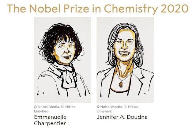 2020 Chemistry Nobel Prize: Emmanuelle Charpentier and Jennifer Doudna