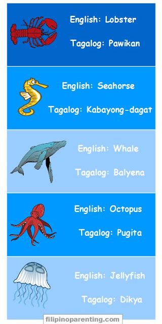Animal Names in Tagalog