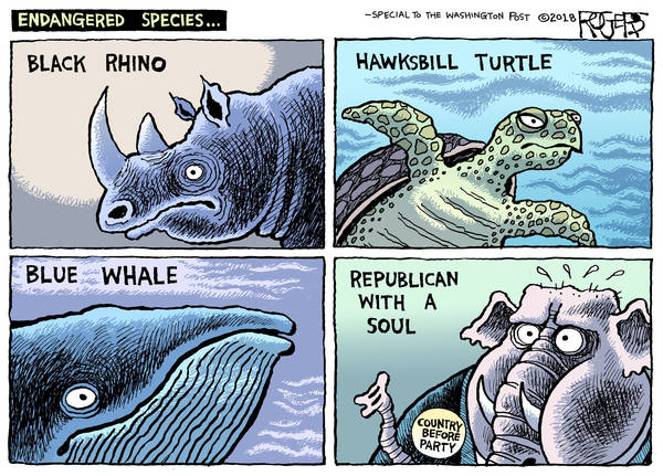 Title:  Endangered Species.   Frame One:  Black Rhino.  Frame Two:  Hawksbill Turtle.   Frame Three:  Blue Whale.  Frame Four (pictured:  Republican Elephant wearing