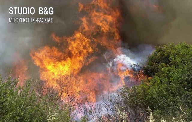 Κάηκε σπίτι από τη μεγάλη φωτιά στα Μέθανα