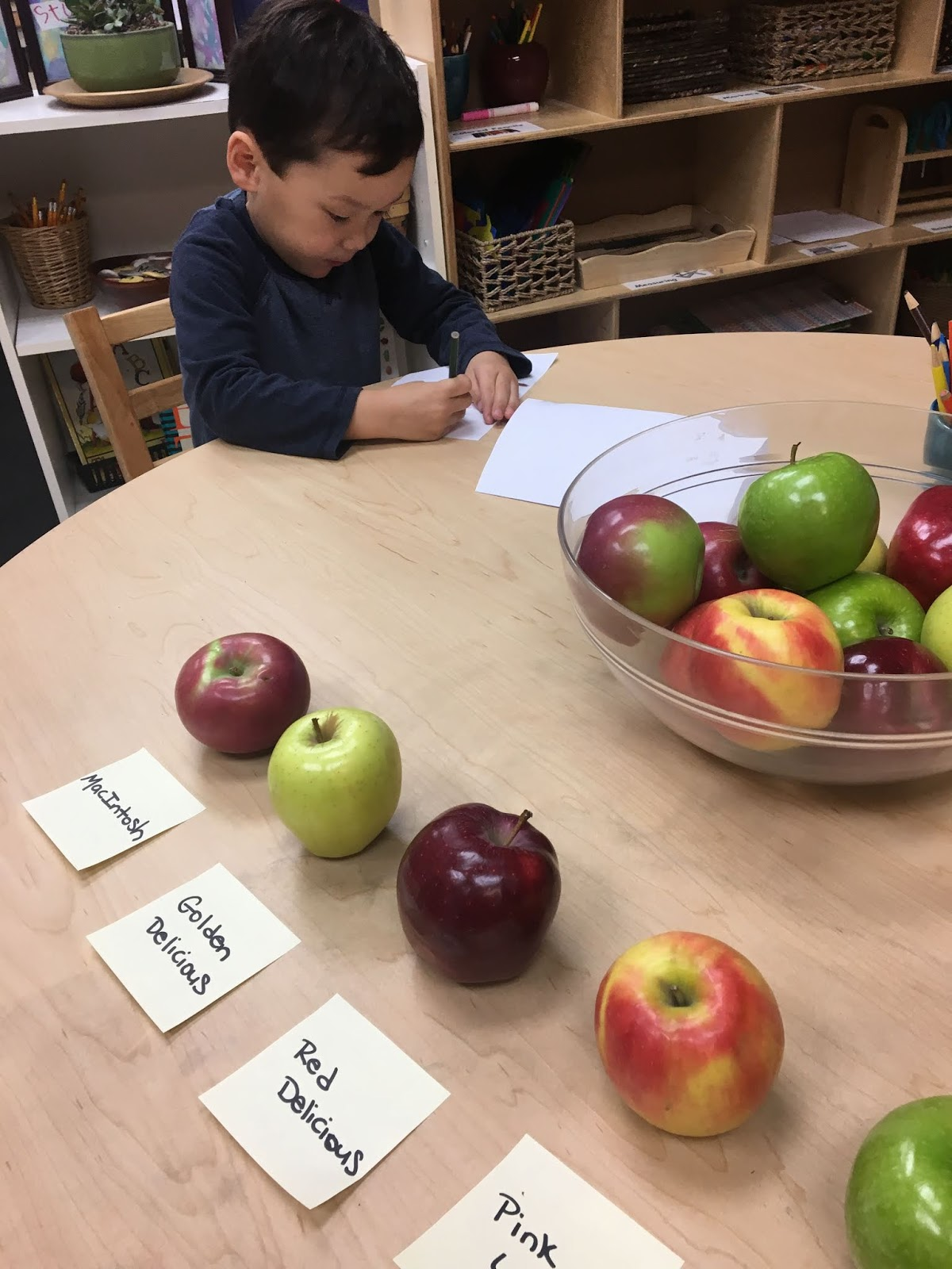 Discoverers Apple Taste Test And Graph