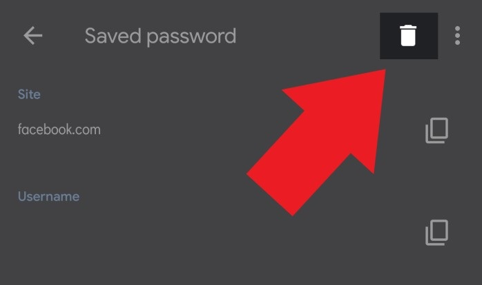 How to View, Edit, Delete, and Export Saved Passwords in Google Chrome 6