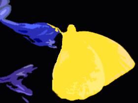 蝶(素材)