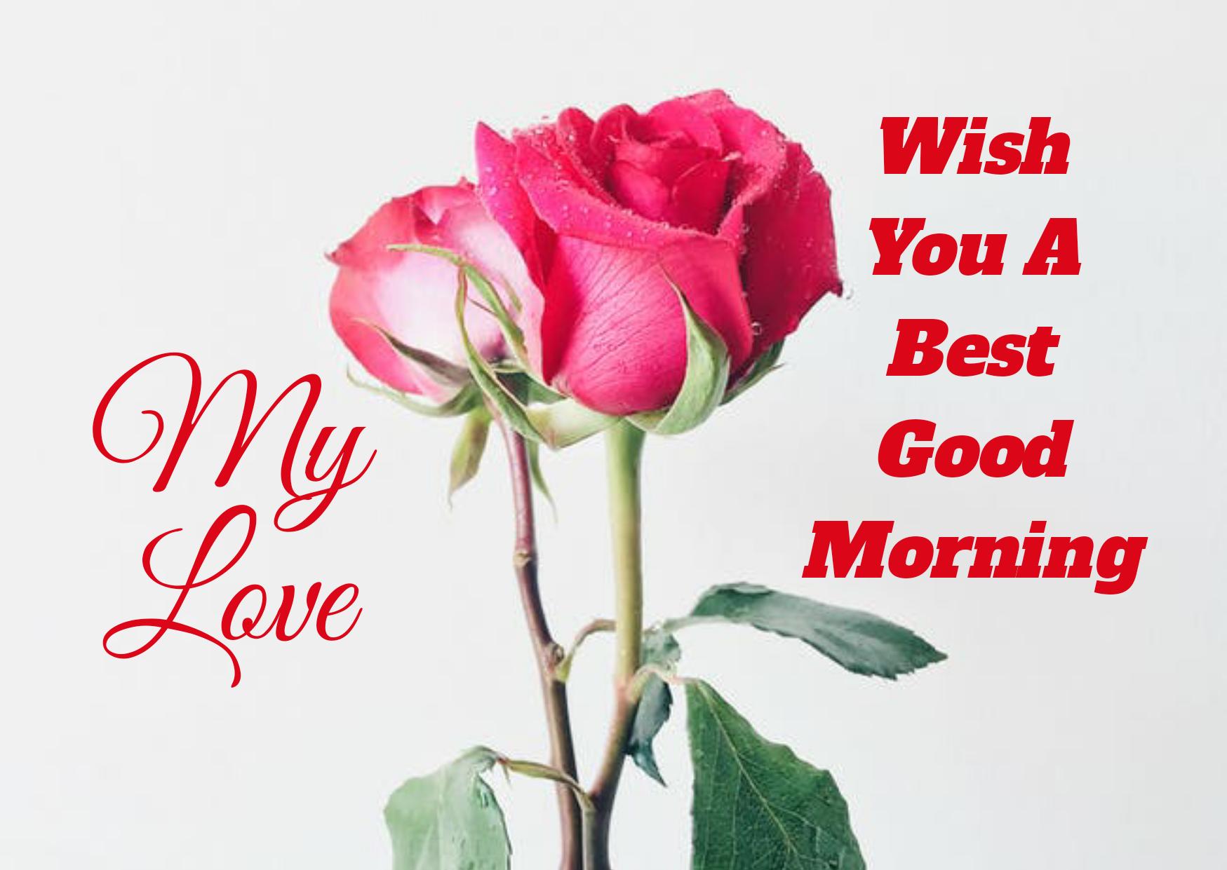 Best Good Morning HD Images, Romantic Good Morning English Status, Love Good Morning HD photos,