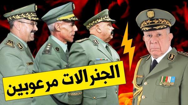 حقوقيون يدينون صبيانية النظام الجزائري تجاه العاهل المغربي ويراسلون الأمم المتحدة في الموضوع
