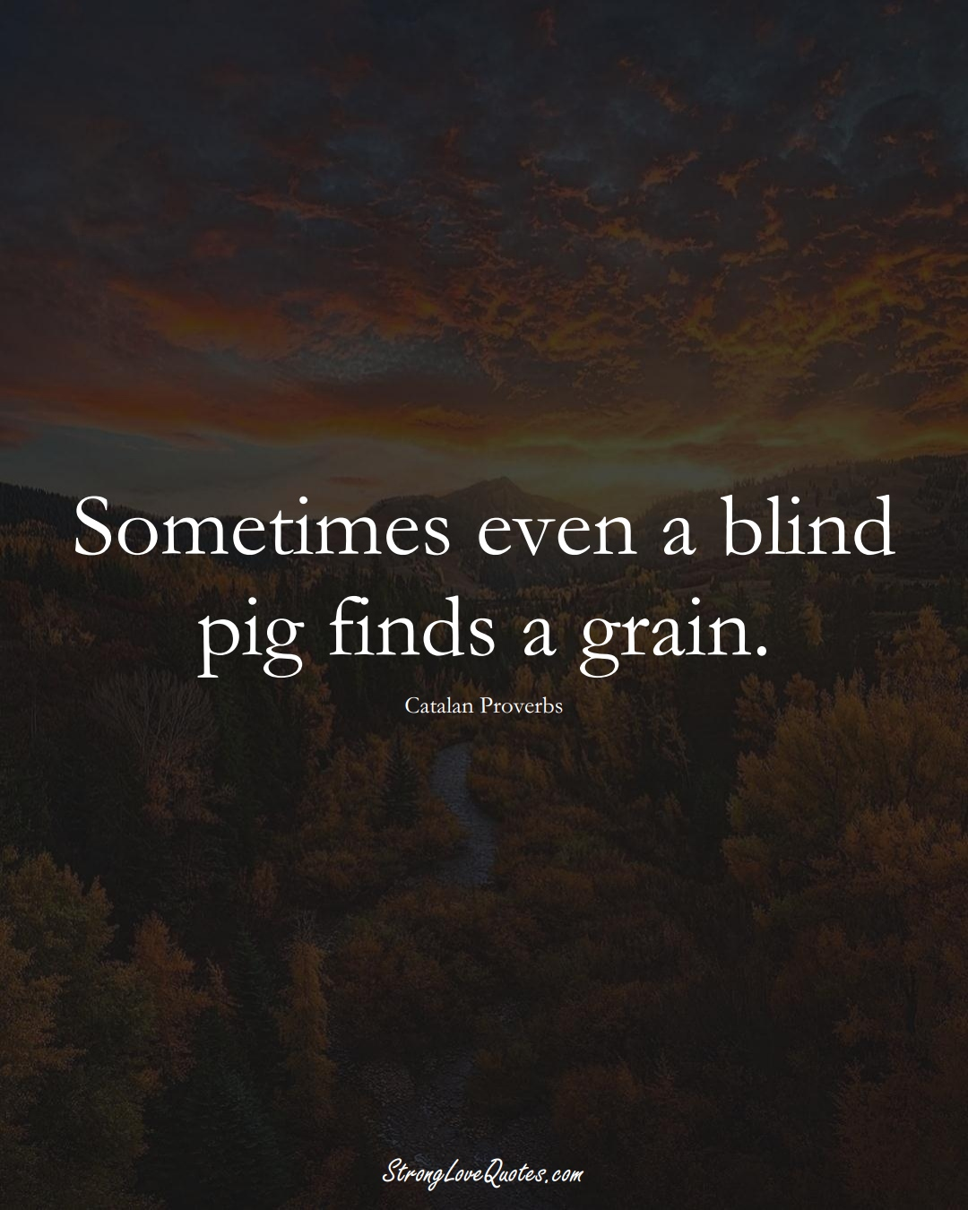 Sometimes even a blind pig finds a grain. (Catalan Sayings);  #EuropeanSayings