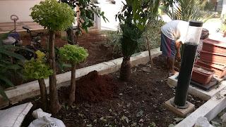 Tukang Taman Bekasi | Tukang Taman Minimalis | Jasa Renovasi Taman | Tukang Taman Murah