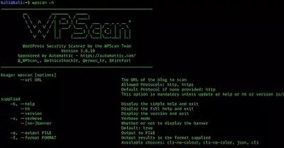 help menu of wpscan