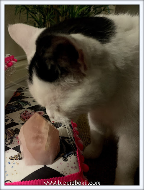Mandalas on Monday ©BionicBasil® Colouring With Cats Mandala #114  Smooch Inspecting the Rose Quartz Crystal of The Week