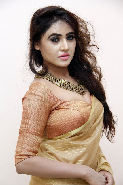 Telugu Hot Actress Sony Charishta latest Photos In Golden Brown Saree and Blouse Exposing Cleavage Actress Trend