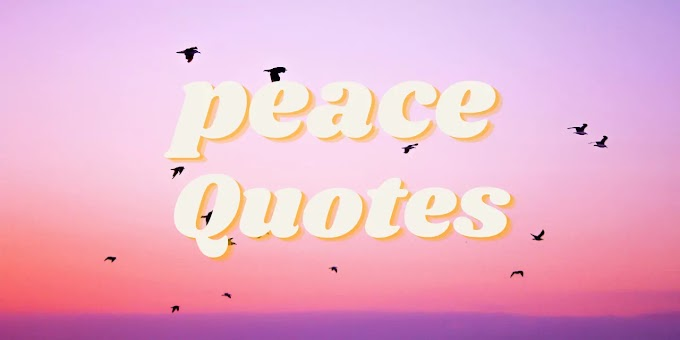 71 Quotes on Peace of Mind to Find Inner Peaceful Living