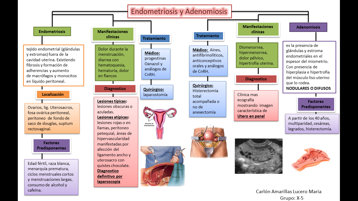 ahued ahued ginecologia pdf