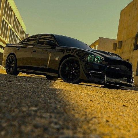 Severe predatory Dodge Charger SRT8 000