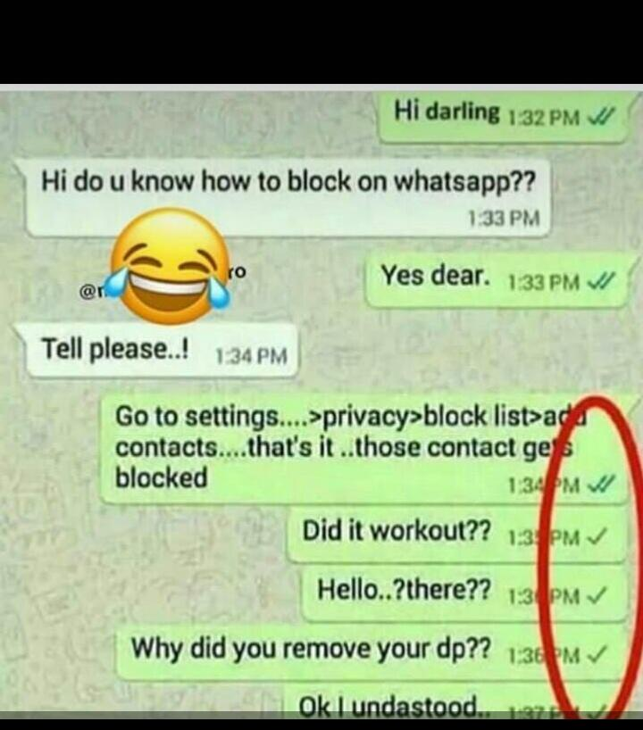 All Your Whatsapp Status Here