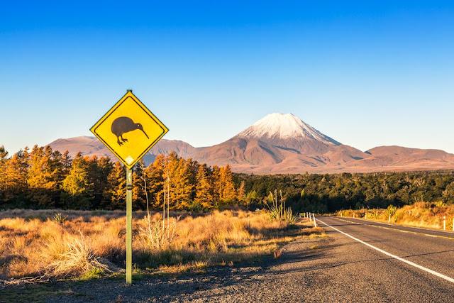 Anda Boleh Mohon Visa New Zealand Untuk Kerja Sambil Melancong Di Sana