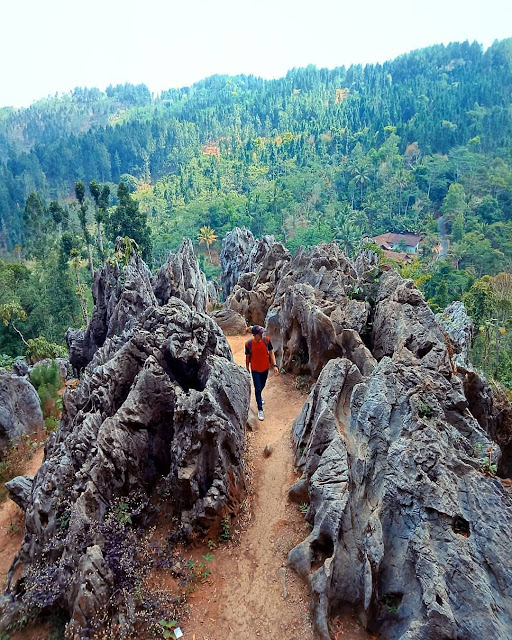 Destinasi Wisata Watu Desel Banjarnegara Pemandangan Bukit yang Indah