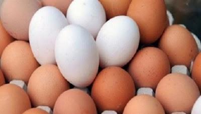 ارتفاع في أسعار البيض بالمزارع بعد زيادة الوقود