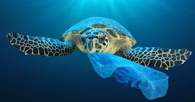 Nos invade el plástico
