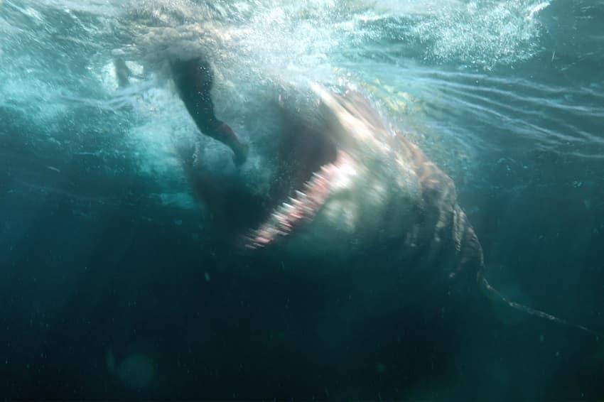 Съёмки акулохоррора «Мег: Монстр глубины 2» начнутся только в 2022 году