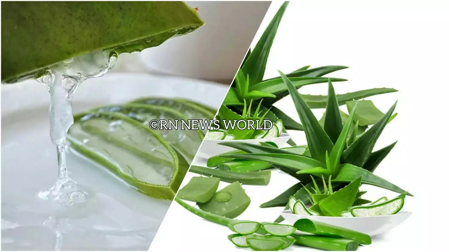 How to use Aloevera Gel For Open Skin Pores