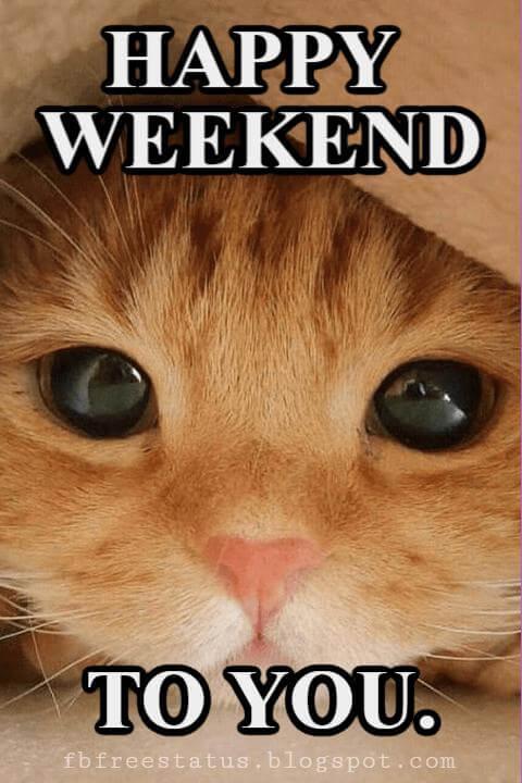 Happy Weekend Pics, Happy Weekend to You.