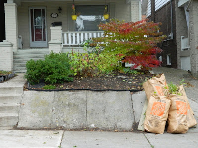 Toronto Beach Hill Fall Cleanup After Paul Jung Gardening Services--a Toronto Organic Gardening Company