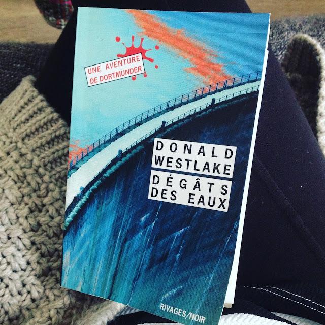 Chronique littéraire Dégâts des eaux par Mally's Books