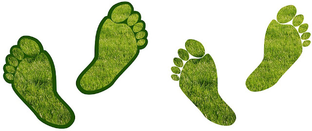 40 Family Friendly Ways to Reduce Your Carbon Footprint